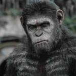 כוכב הקופים: השחר - סיזר